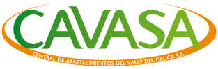 Cavasa Logo