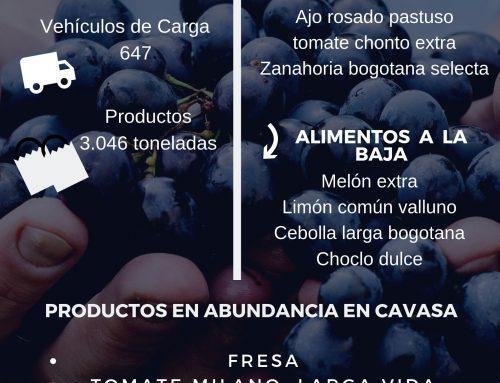 Volúmenes ingresados de alimentos CAVASA Sept 25 -2019
