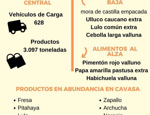 Volúmenes ingresados de alimentos CAVASA Sept 18 -2019