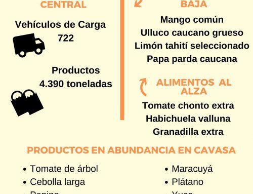 Volúmenes ingresados de alimentos CAVASA enero 12 -2020