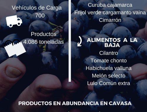 Volúmenes ingresados de alimentos CAVASA enero 26 -2020