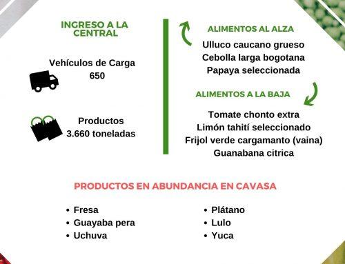 Volúmenes ingresados de alimentos CAVASA enero 19 -2020
