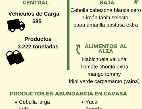 Volúmenes ingresados de alimentos CAVASA enero 29 -2020