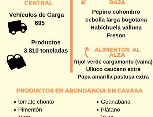 Volúmenes ingresados de alimentos CAVASA marzo 15-2020
