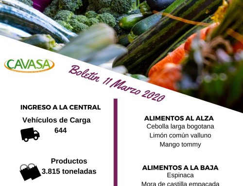 Volúmenes ingresados de alimentos CAVASA marzo 11-2020