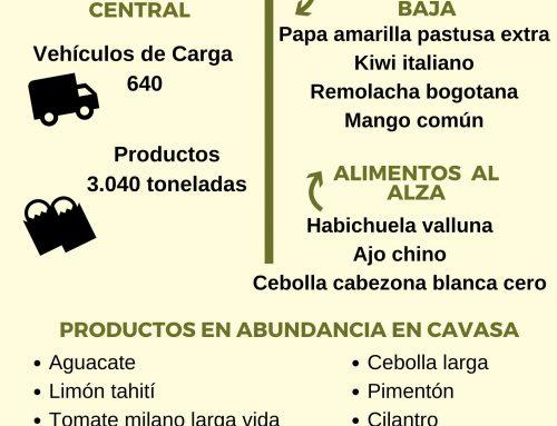Volúmenes ingresados de alimentos CAVASA Mayo 27-2020