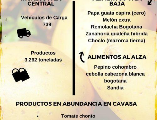 Volúmenes ingresados de alimentos CAVASA Junio 17-2020