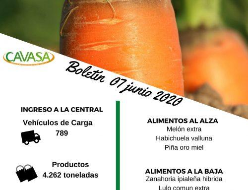 Volúmenes ingresados de alimentos CAVASA Junio 07-2020