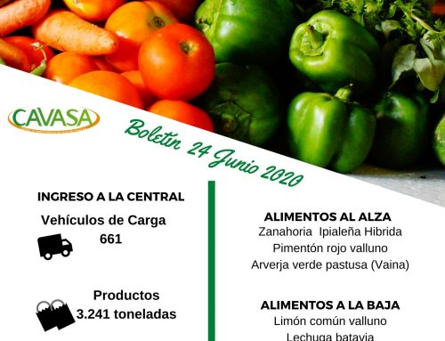 Volúmenes ingresados de alimentos CAVASA Junio 24-2020
