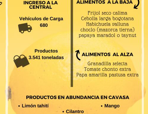 Volúmenes ingresados de alimentos CAVASA Julio 01-2020
