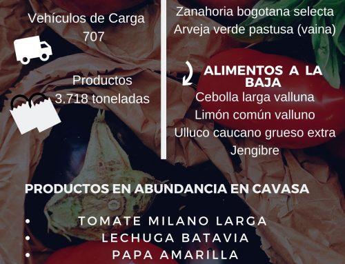 Volúmenes ingresados de alimentos CAVASA Julio 15-2020