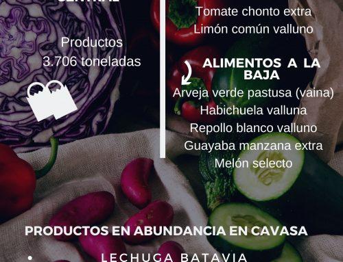 Volúmenes ingresados de alimentos CAVASA Julio 22-2020