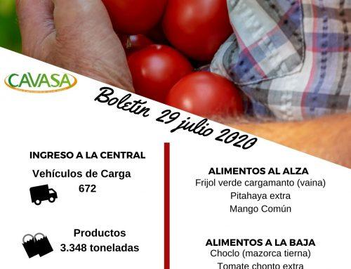 Volúmenes ingresados de alimentos CAVASA Julio 29-2020