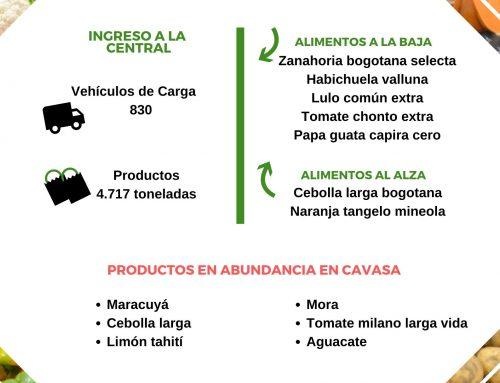 Volúmenes ingresados de alimentos CAVASA Julio 12-2020
