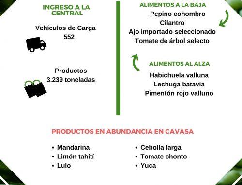 Volúmenes ingresados de alimentos CAVASA Agosto 2-2020