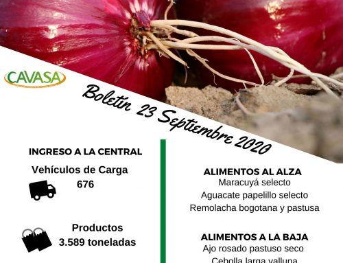 Volúmenes ingresados de alimentos CAVASA Septiembre 23-2020