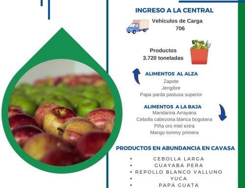 Volúmenes ingresados de alimentos CAVASA Octubre 25-2020