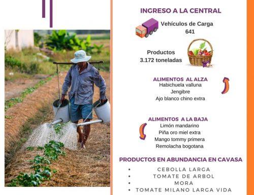 Volúmenes ingresados de alimentos CAVASA Octubre 28-2020