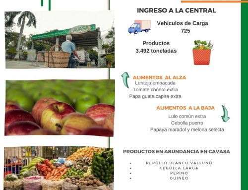 Volúmenes ingresados de alimentos CAVASA Septiembre 30-2020