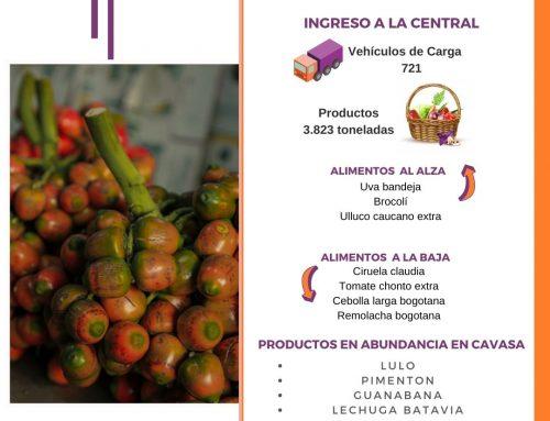Volúmenes ingresados de alimentos CAVASA Noviembre 11-2020
