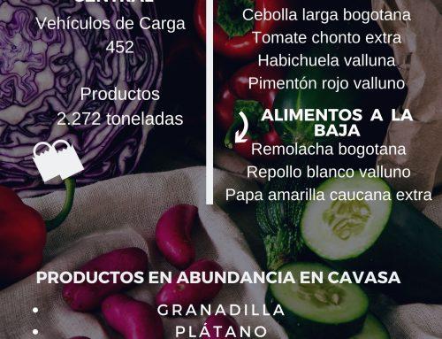 Volúmenes ingresados de alimentos CAVASA Enero 03-2021