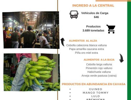 Volúmenes ingresados de alimentos CAVASA Enero 06-2021
