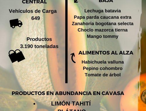 Volúmenes ingresados de alimentos CAVASA Enero 13-2021
