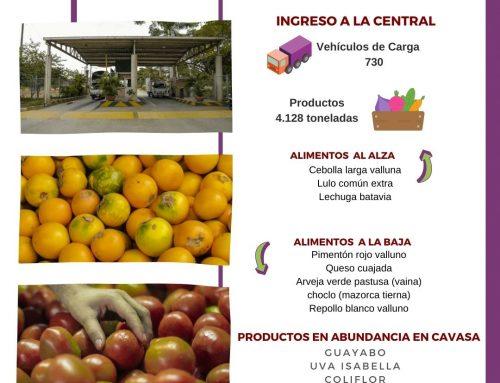 Volúmenes ingresados de alimentos CAVASA Enero 17-2021