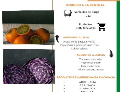 Volúmenes ingresados de alimentos CAVASA Febrero-2021