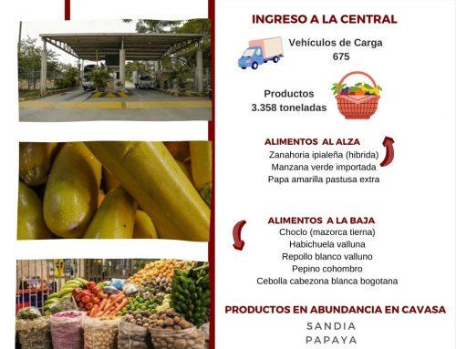 Volúmenes ingresados de alimentos CAVASA 10 Febrero-2021