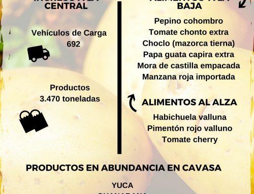 Volúmenes ingresados de alimentos CAVASA 14 Febrero-2021