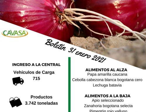Volúmenes ingresados de alimentos CAVASA Enero 31-2021