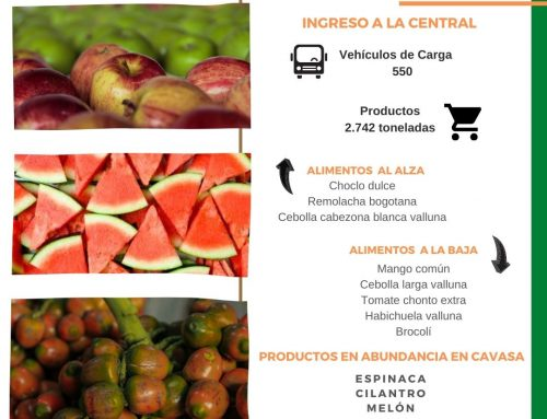 Volúmenes ingresados de alimentos CAVASA 07 Marzo-2021