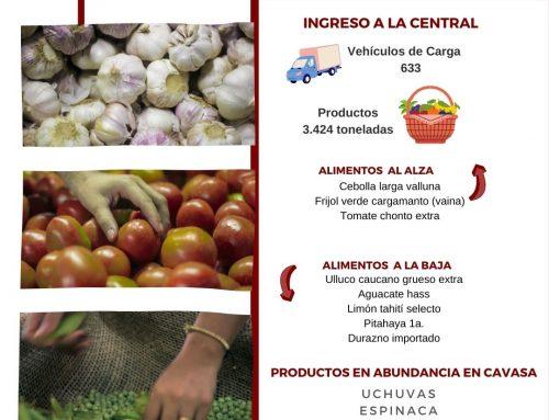Volúmenes ingresados de alimentos CAVASA 28 Febrero-2021